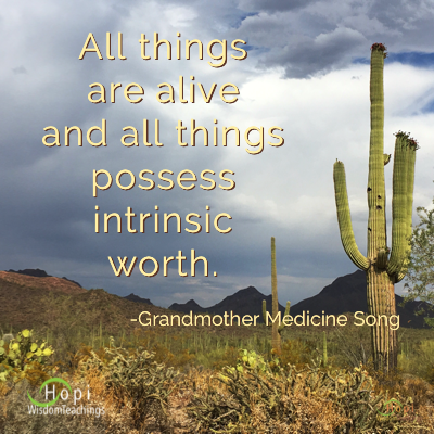 "photo by barbaraleeblack.com and quote by Grandmother Medicine Song, ""All things are alive and all things possess intrinsic worth."""