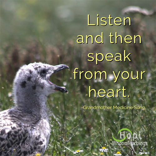 "quote by Grandmother Medicine Song, "" Listen and then speak from your heart."" Image of baby seagull chirping by barbaraleeblack.com"