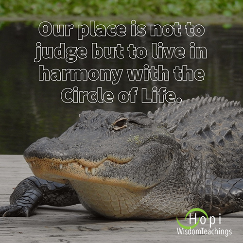 """""""Our place is to not judge but to live in harmony with the Circle of Life."""""""
