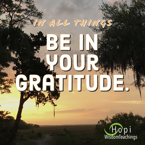 """""""In all things be in your gratitude.:"""""""