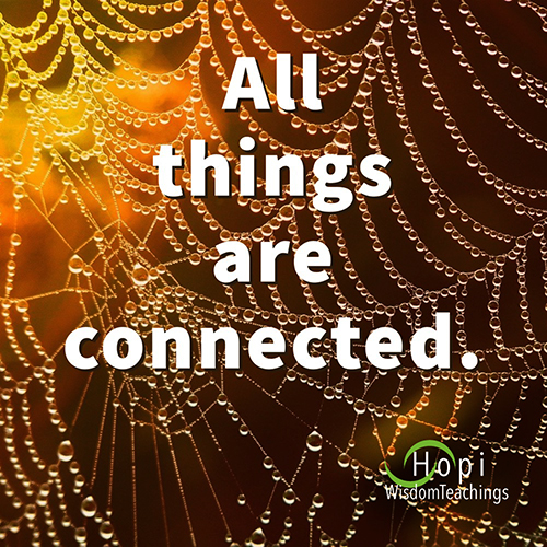 """""""All things are connected."""" Hopi Wisdom Teachings"""