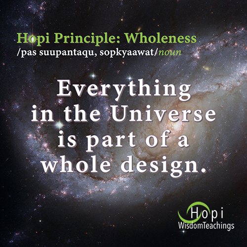 """Hopi Principle of Wholeness: Everything in the Universe is part of a whole design."""""""