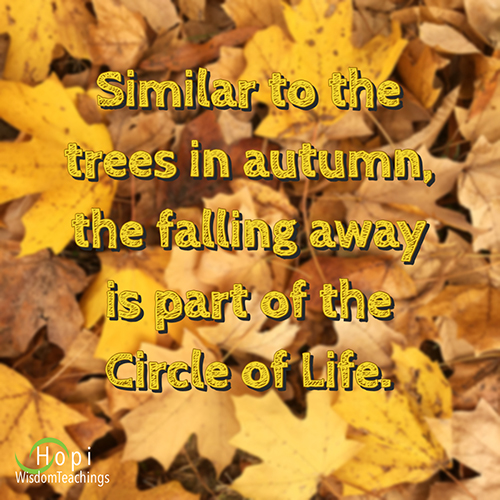 """""""Similar to the trees in autumn, the falling away is part of the Circle of Life"""
